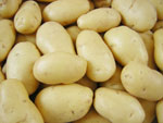 Mesin Potato Pealer 7